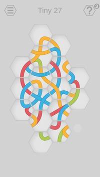 Poster Hexa Knot