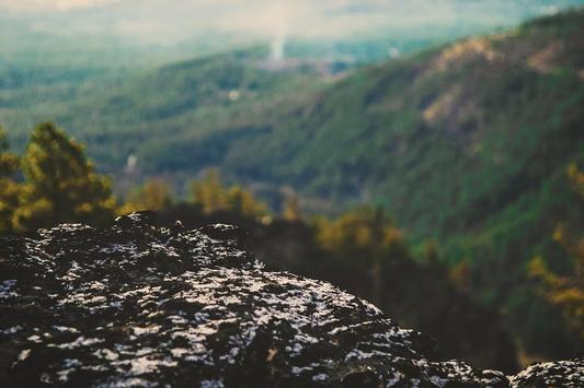 Retro Cam Photos screenshot 4