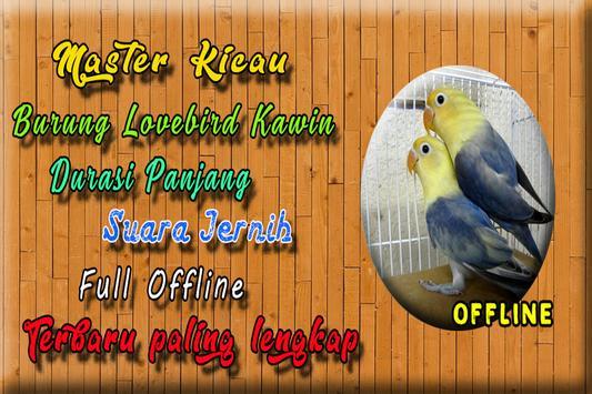 Suara Burung Lovebird Kawin MP3 poster