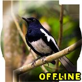 Suara Burung Kacer Full Isian MP3 icon