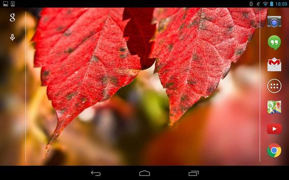 Autumn Live Wallpaper 2014 screenshot 6