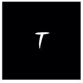 Toxizen Pro icon