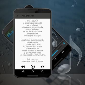 VICENTE FERNANDEZ canciones-Letras Hermoso Cariño apk screenshot