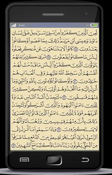 Holy Quran for ios and android screenshot 3