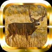 Deer Adventure HD icon