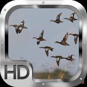 Duck Hunter Pro icon