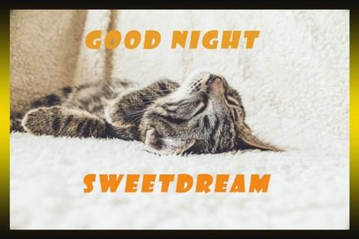 Good Night Greeting Cards For Android Apk Download
