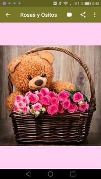 Rosas y Ositos Románticos screenshot 16
