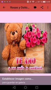 Rosas y Ositos Románticos screenshot 20