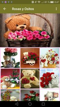 Rosas y Ositos Románticos screenshot 4