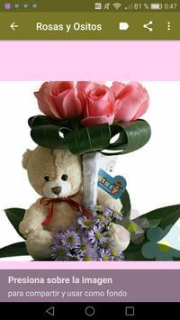 Rosas y Ositos Románticos screenshot 5