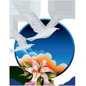 New Image International icon
