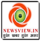 Newsview Lite icon