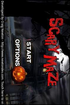 Scary Maze poster