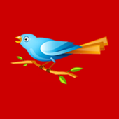 New Wings Play School icon