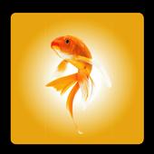AquaKerala icon