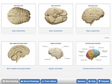 NeuroSketch screenshot 1