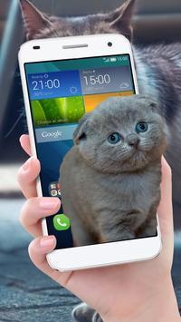 Cat On Mobile Screen Fun screenshot 1