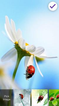 Ladybug Lock Screen apk screenshot