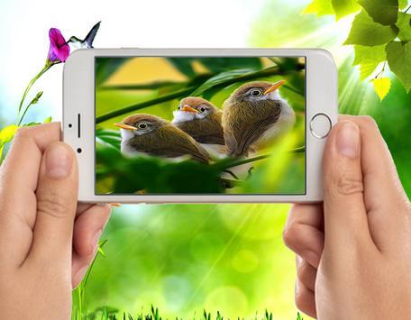 New Bird Photo Frames screenshot 3