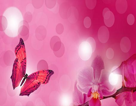 New Pink Flower Butterfly poster