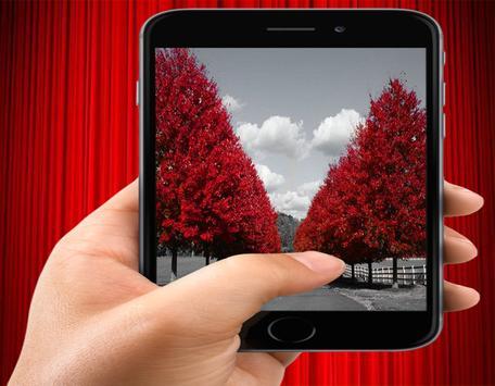 Beautiful Red Leaves apk screenshot