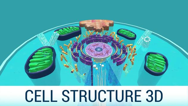 Cell Structure 3D poster
