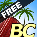 Beach Cricket APK