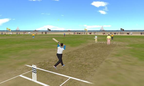 Beach Cricket apk स्क्रीनशॉट