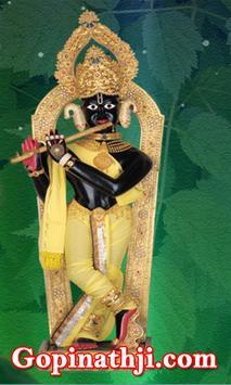 Gopinathji Mandir - Gadhpur poster
