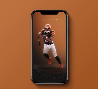 NFL Wallpapers _ Pics and Schedules poster