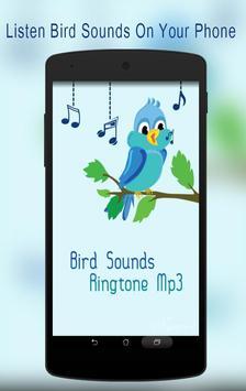 Bird Sounds Ringtone Mp3 poster