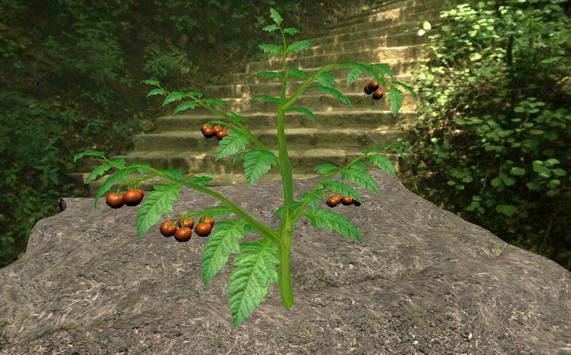 식물의증산작용 기간제한 screenshot 1