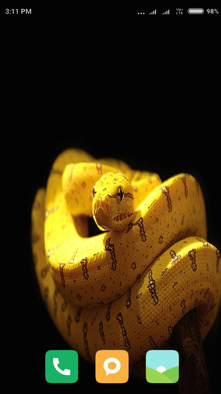 HD Snake Wallpapers for Android - APK Download