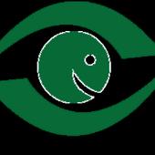NigerianEye icon