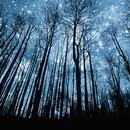 Lwp 夜空 APK
