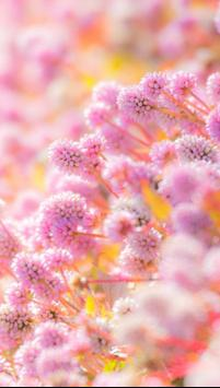 Pink Flower Live Wallpaper screenshot 2