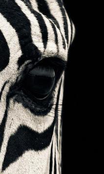 Animal Print Wallpaper apk screenshot