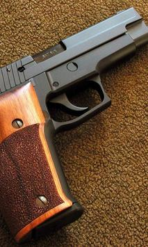 Wallpapers Sig Sauer P226 Poster