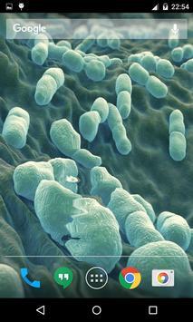 Bacteria Live Wallpaper apk screenshot