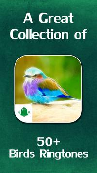 Bird Ringtones poster