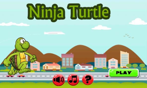Adventure Ninja Turtle poster