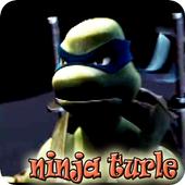 Ninja Turtle fighting Shredder icon