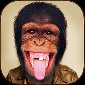 Face Changer - Animal Face icon