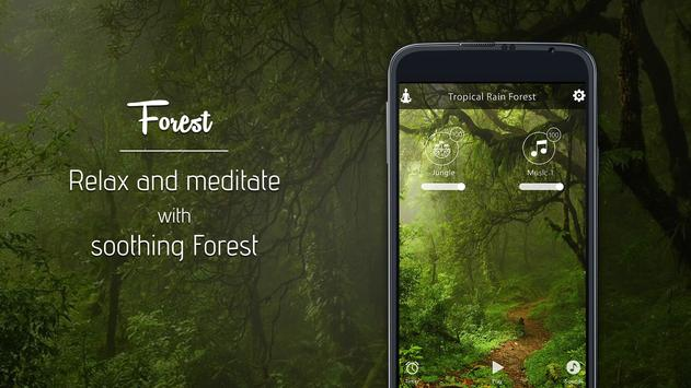 Relax Forest~Meditation sounds poster