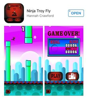 Ninja Troy Fly screenshot 12