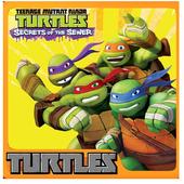 Ninja Go Turtle icon