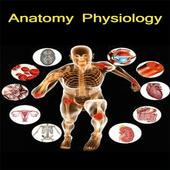 Anatomy Physiology Hindi icon