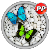 Profil Pictures Butterfly icon