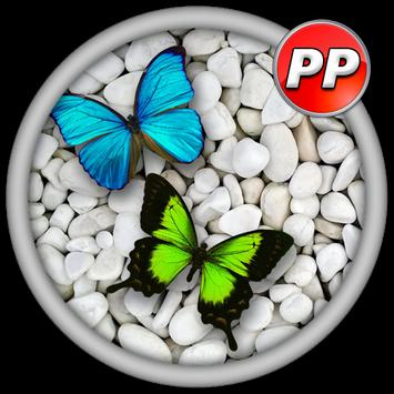 Profil Pictures Butterfly poster